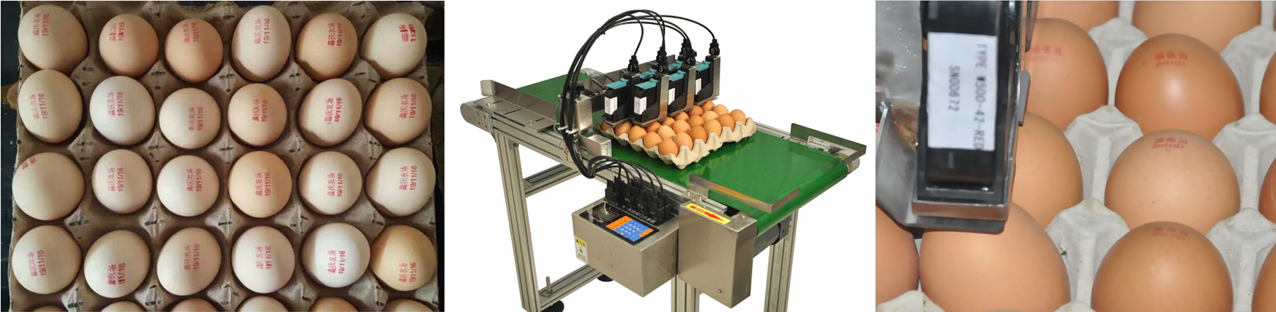 egg inkjet coding machine.jpg